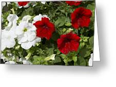 ,, Flowers ,, Greeting Card