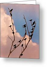 19 Blackbirds Greeting Card