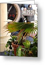 1926 Model T And Plants Greeting Card