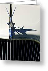 1934 Terraplane Coupe Hood Ornament Greeting Card