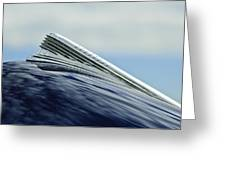 1941 Chevrolet Hood Ornament 2 Greeting Card