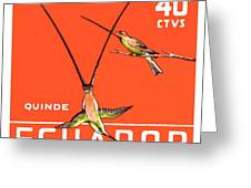1958 Ecuador Hummingbirds Postage Stamp Greeting Card