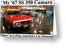 1967 Ss 350 Camaro Scharf Greeting Card