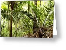 Jungle 94 Greeting Card