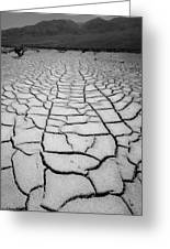 1a6832 Bw Mud Cracks In Death Valley Greeting Card