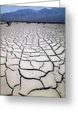 1a6832 Mud Cracks In Death Valley Greeting Card