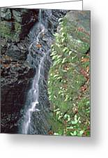 1b6353 Falls On Sonoma Mountain Greeting Card
