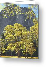 1m6610 Middle Cathedral Rock In Autumn Greeting Card