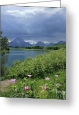 1m9236 Mt. Moran And Sticky Geranium Greeting Card