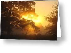 1.sunrise Greeting Card