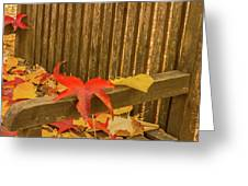 A Foliage Pillow On A Bench In A Woodland Greeting Card