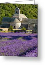 Abbaye De Senanque Greeting Card