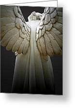 Angel Series Greeting Card