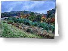 Autumn Colors In The Blue Ridge Mountains Greeting Card