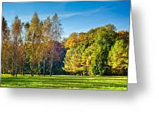 Autumn Colors Of Nature Greeting Card