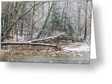 Autumn Snow Williams River  Greeting Card