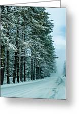 Bad Road Conditions While Driving In Winter Greeting Card