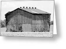 Barn In Kentucky No 71 Greeting Card