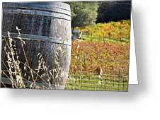 Barrel In The Vineyard Greeting Card