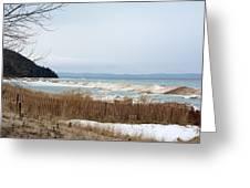 Beach And Ice Greeting Card