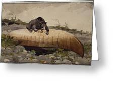 Bear And Canoe Greeting Card