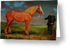Belgian Draft Horse. Greeting Card