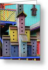 Birdhouses For Colorful Birds 3 Greeting Card