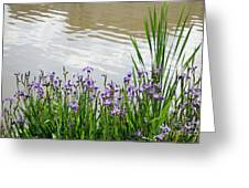 Blue Daffodils Greeting Card