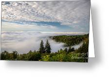 Blue Ridge Parkway. Greeting Card