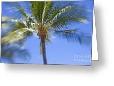 Blurry Palms Greeting Card