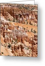 Bryce Canyon - Utah Greeting Card