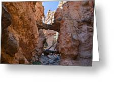 Navajo Trail Natural Bridge Greeting Card