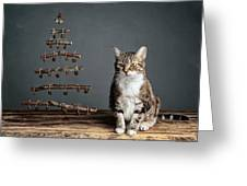 Cat Christmas Greeting Card