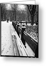 Central Park 8 Greeting Card
