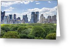 Central Park South Greeting Card by Ariane Moshayedi
