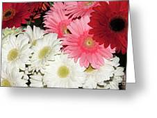 Colorful Gerber Greeting Card