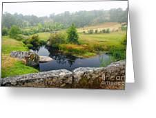 Creek Greeting Card by Carlos Caetano