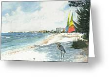 Blue Heron And Hobie Cats, Crescent Beach, Siesta Key Greeting Card