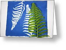 Cyanotype Print, Fern Greeting Card