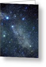 Cygnus Constellation Greeting Card