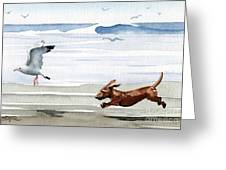 Dachshund At The Beach  Greeting Card