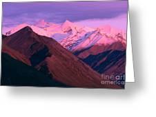 Denali National Park Greeting Card
