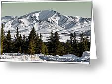 Denali Park - Alaska Greeting Card