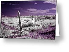 Desertic Landscape Greeting Card