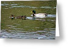 2 Ducks Greeting Card