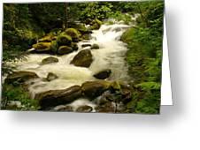 Eagle Creek Greeting Card