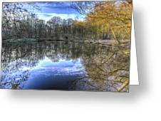 Early Morning Forest Pond Greeting Card