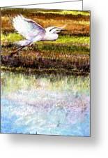 Egret 1 Greeting Card by Peter R Davidson