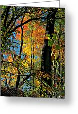 Fall Fire Works Greeting Card