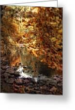 Fall Reflected Greeting Card
